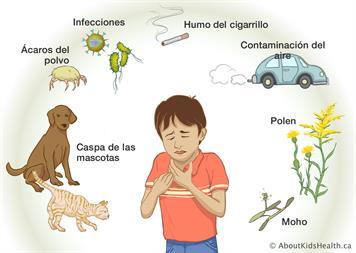 Factores desencadenantes del asma